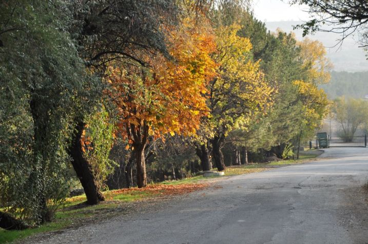 ODTÜ'de sonbahar