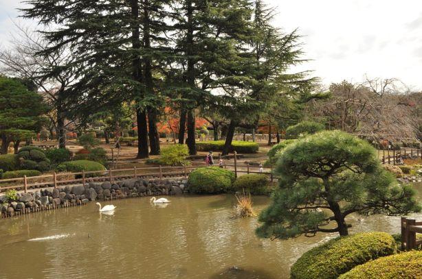 Kuğulu parkı da var