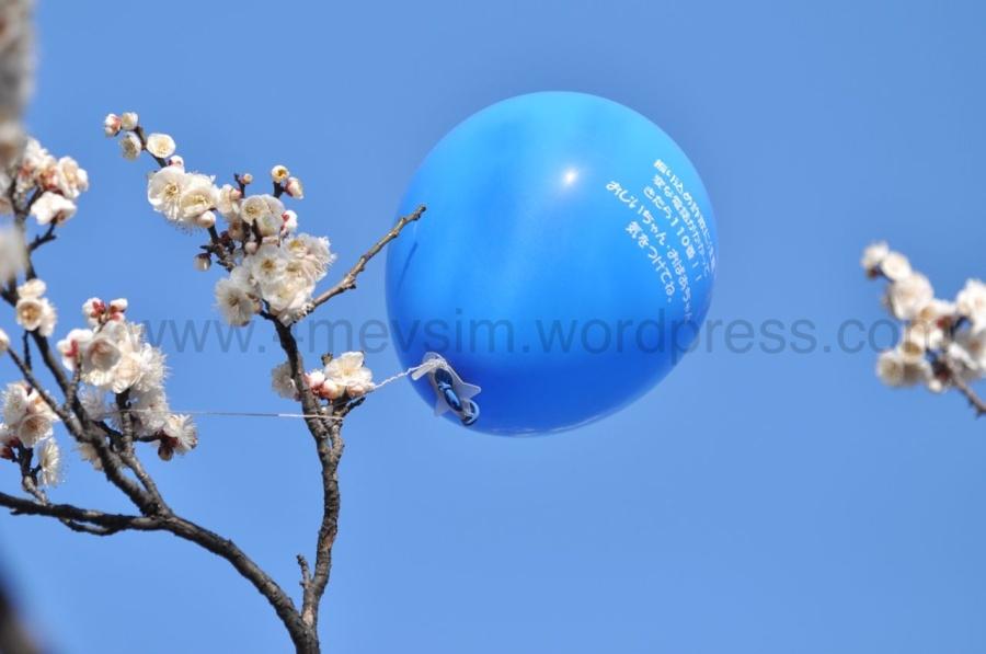 Dallara takılmış bir balon