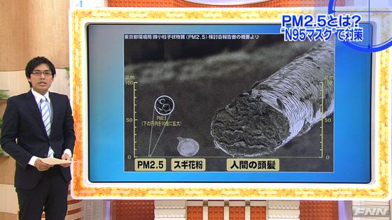 Televizyonda PM 2.5 anlatılıyor. Sağdaki boruya benzeyen şekil insan saçı, soldaki beyaz daire içine alınmış PM2.5 partikülleri büyütülmüş