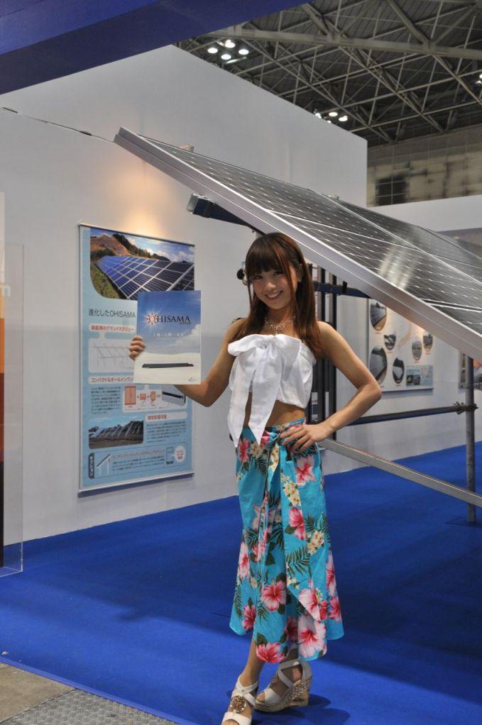 PVJapan 2013 fuarında bir güneş uzmanı