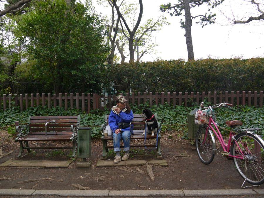 Parkda bir ziyaretçi ve köpeği