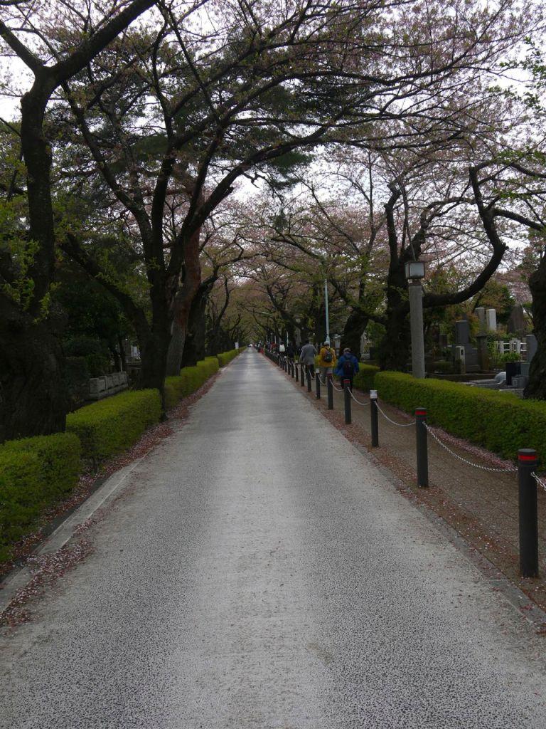 Aoyama Mezarlığı girişi