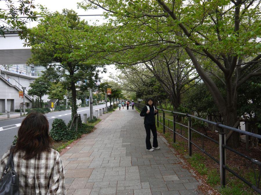 Varış noktasına kadar olan yol geniş ve yeşillik. Ha gayret az kaldı
