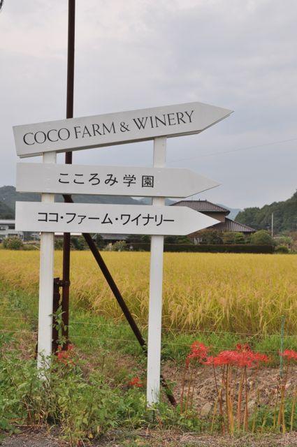 Çiftlik Aşikaga'dan 20 dk uzaklıkta