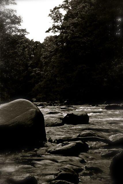 nehir002_1