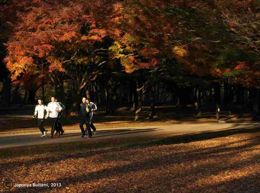 Sabah saatlerinde parkta koşanlar