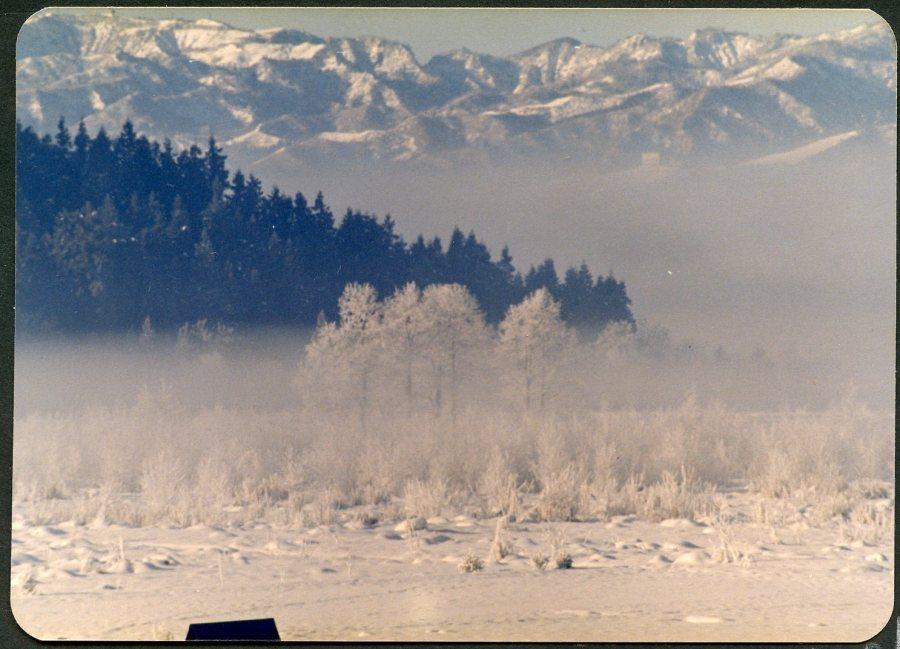 """Üniversite için """"Kar Diyarı"""" diye bilinen bölgede bir yer tahsis edilir"""
