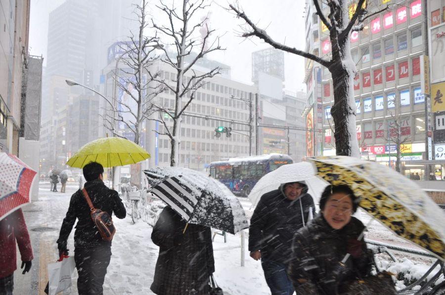 Shinjuku merkezden