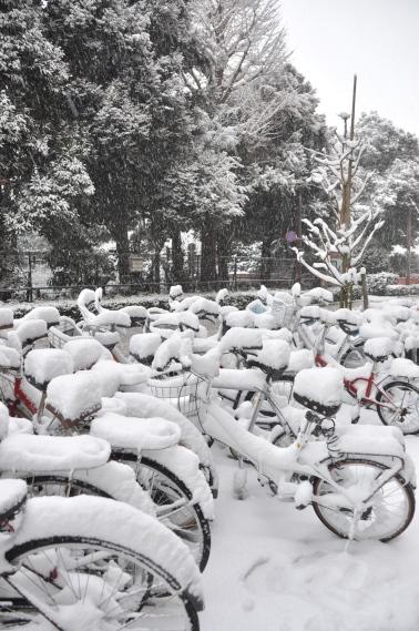 Bisikletler kar altında