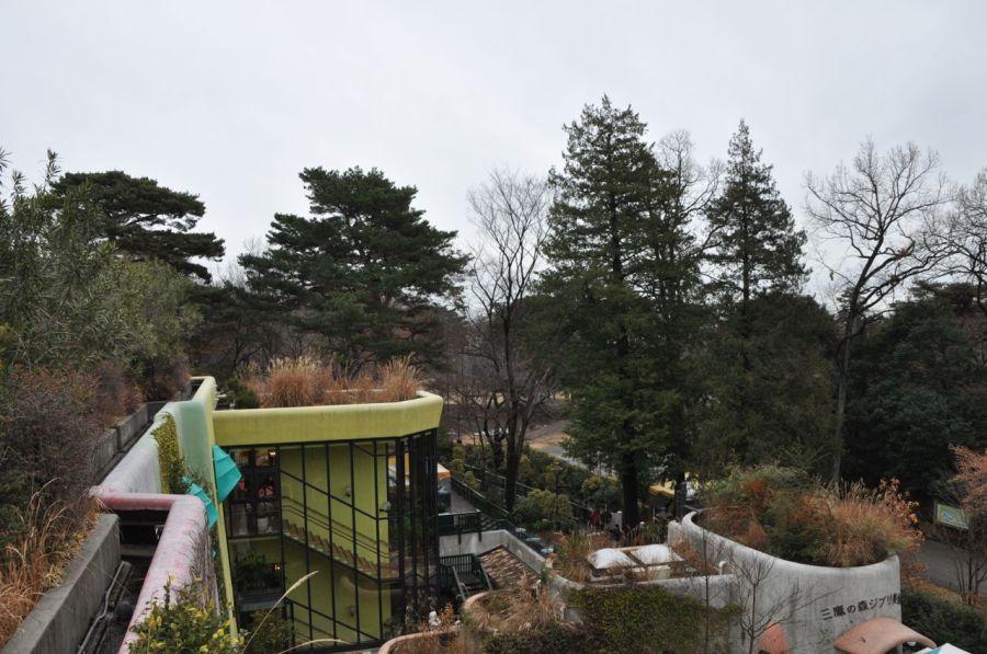 Dış bahçesi