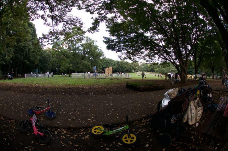 Bisikleter atılmış, bebek arabaları terkedilmiş, herkes oyun alanında herhalde