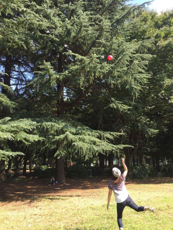 Ağaçta kalan bumerangı yere düşürmeye çalışıyoruz