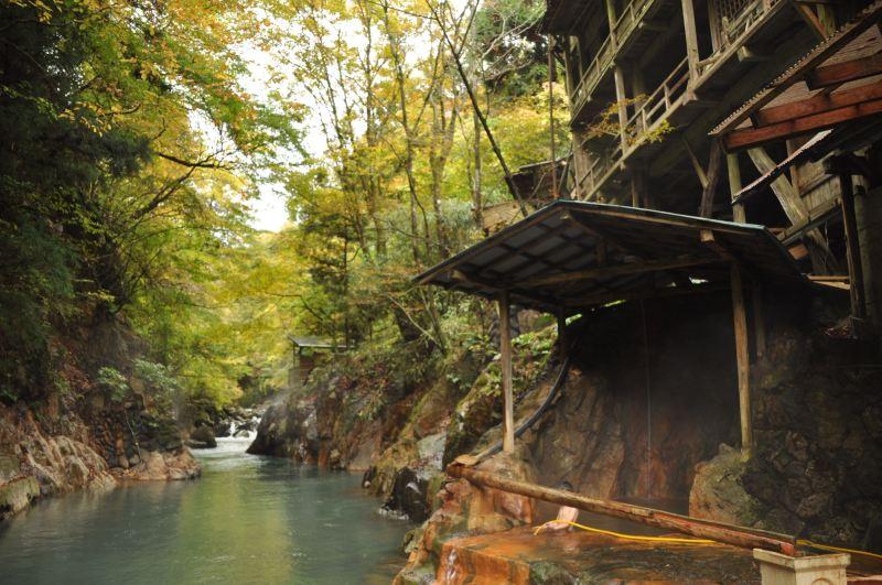 Doğa ve kaplıca turizmi de Japonya için önemli